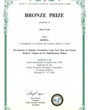 서울 국제 발명 대전 동상 수상